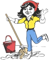 chicago cleaning company